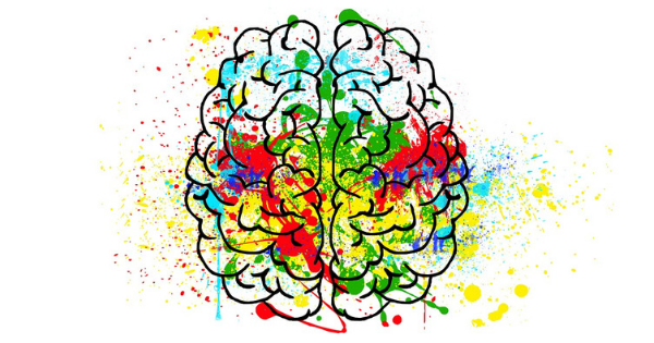 neuroplasticité et sophrologie