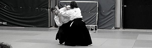 aikido pour hp ou haut potentiel