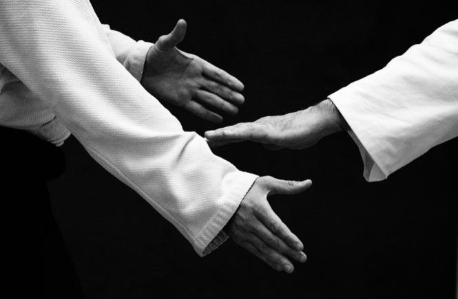 aikido pour le zèbre ou hp