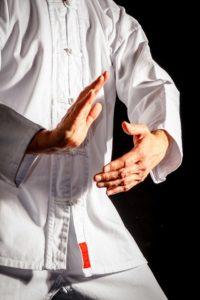 Arts martiaux internes Tai Chi